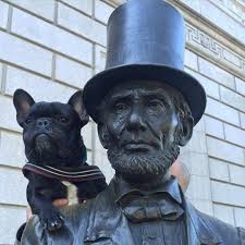 french bulldog with Abraham Lincoln